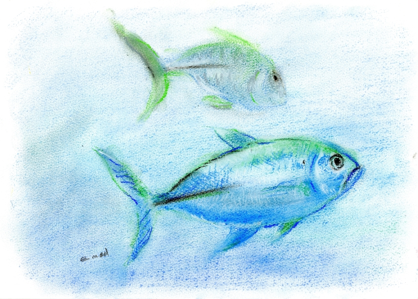 fisch als symbol